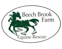 Beech Brook Equine Rescue