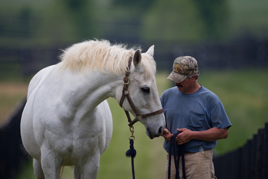 Old Friends in Kentucky - photo by www.equisportphotos.com