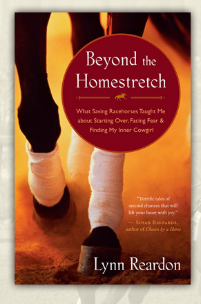 Beyond the Homestretch by Lynn Reardon