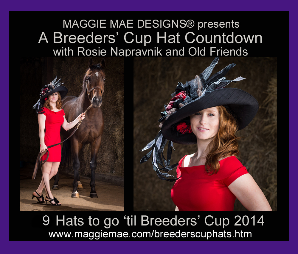 "The ""Teddy"" Top Hat Photo - ""A Breeders' Cup Hat Countdown"" by MAGGIE MAE DESIGNS®"