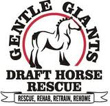Gentle Giants Drafte Horse Rescue