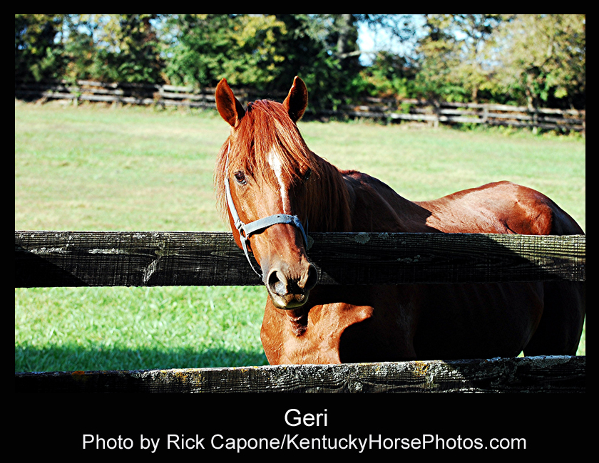 Geri - Photo by Rick Capone