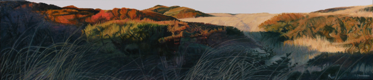 October Dunes, Tom Steinmann artist