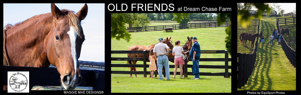 Dream Chase Farm - Old Friends Thoroughbred Retirement Facility in KY